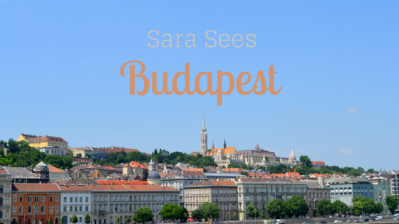 Sara Sees (4)